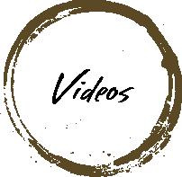 bot_videos